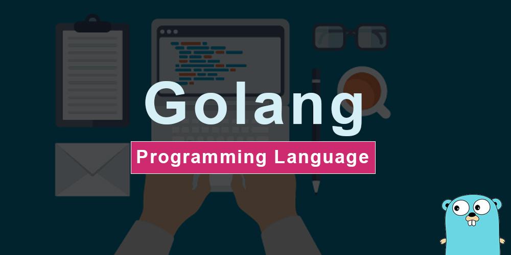 Image of Go Programming Language