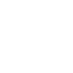 Golang Services Technology used Golang Logo